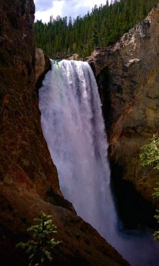 Cool green streak in the Lower Falls.