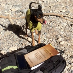 Frankie likes the same bible we do.