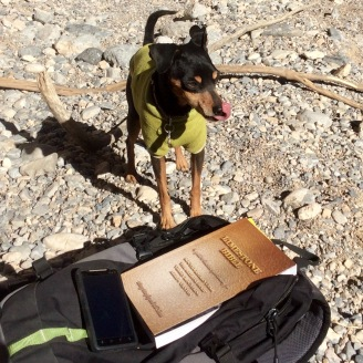 Frankie likes the same bible we do.