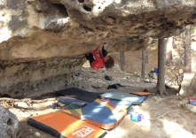 Maggie working Meat Eater, V7.