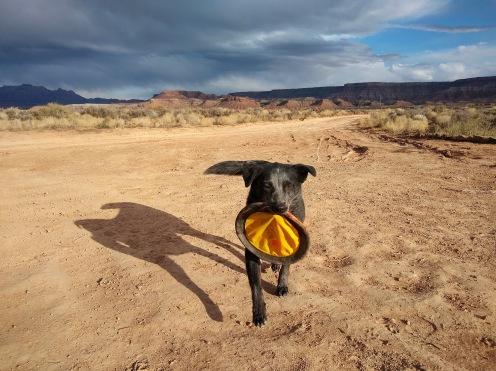 Frisbee Lola.